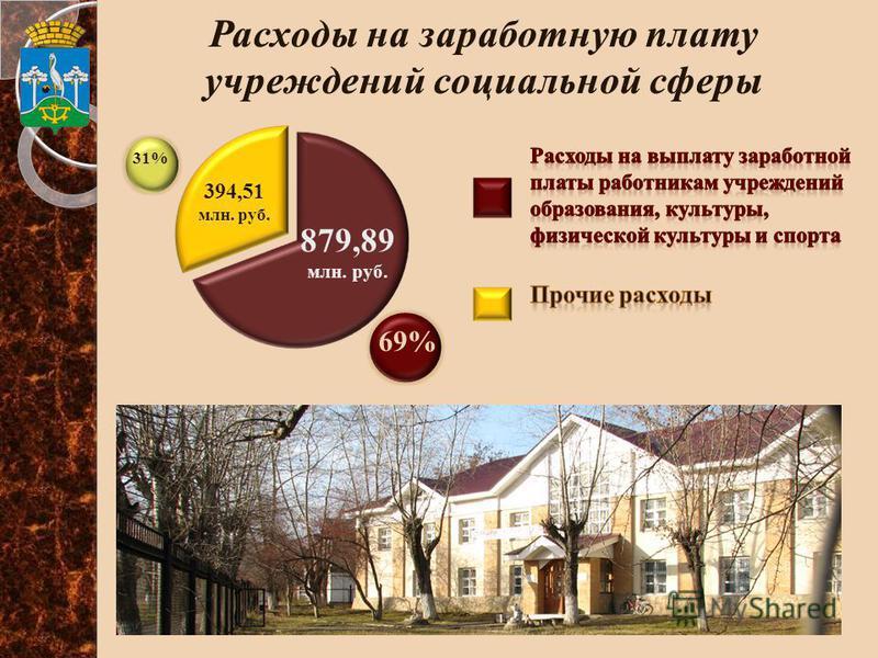 879,89 млн. руб. 394,51 млн. руб. 31% 69%