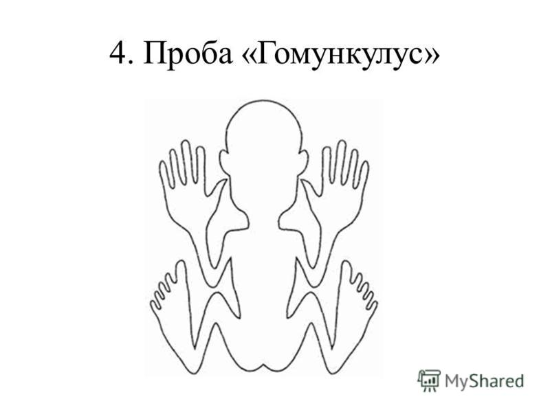 4. Проба «Гомункулус»