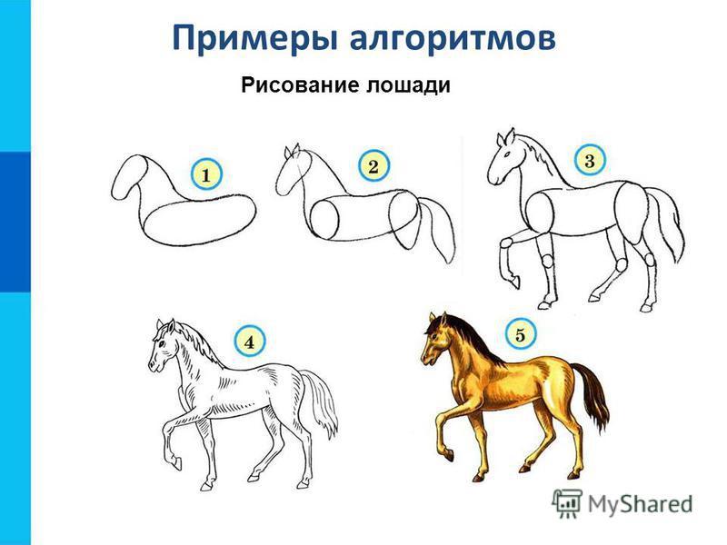 Примеры алгоритмов Рисование лошади