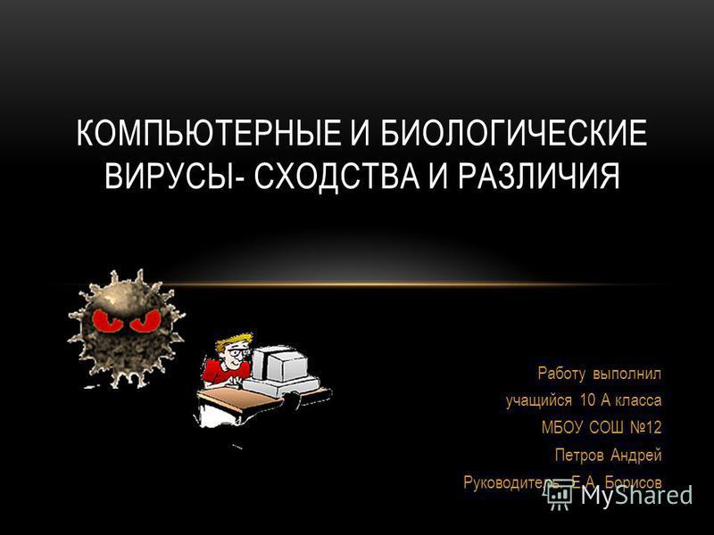 Работу выполнил учащийся 10 А класса МБОУ СОШ 12 Петров Андрей Руководитель: Е.А. Борисов КОМПЬЮТЕРНЫЕ И БИОЛОГИЧЕСКИЕ ВИРУСЫ- СХОДСТВА И РАЗЛИЧИЯ