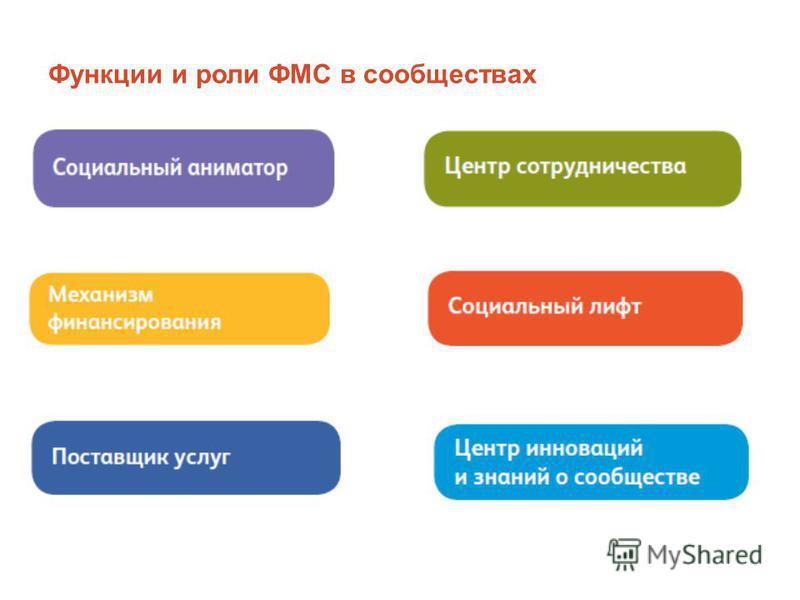 Функции и роли ФМС в сообществах