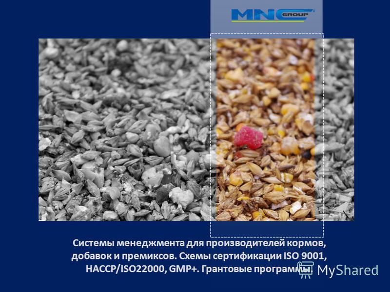 Системы менеджмента для производителей кормов, добавок и премиксов. Схемы сертификации ISO 9001, HACCP/ISO22000, GMP+. Грантовые программы.