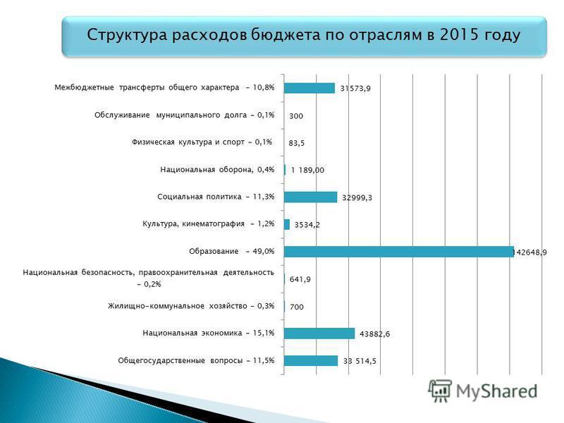 Структура расходов бюджета по отраслям в 2015 году
