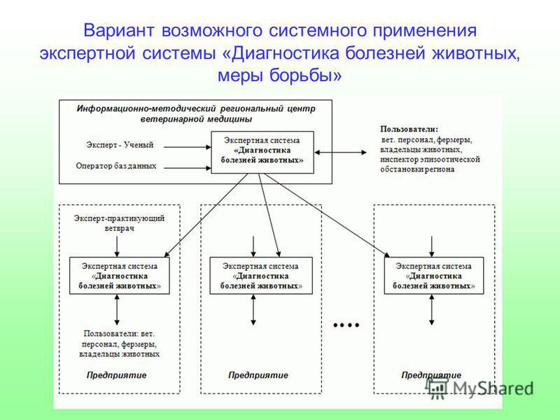 Вариант возможного системного применения экспертной системы «Диагностика болезней животных, меры борьбы»