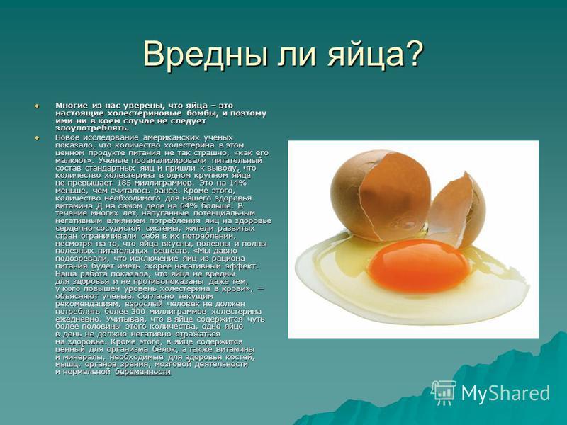 Вредны ли яйца? Многие из нас уверены, что яйца – это настоящие холестериновые бомбы, и поэтому ими ни в коем случае не следует злоупотреблять. Многие из нас уверены, что яйца – это настоящие холестериновые бомбы, и поэтому ими ни в коем случае не сл