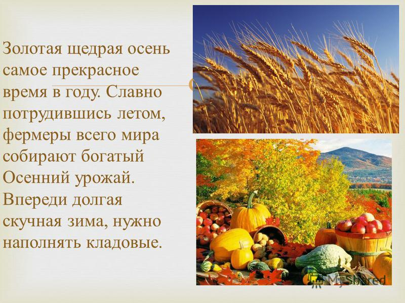 Золотая щедрая осень самое прекрасное время в году. Славно потрудившись летом, фермеры всего мира собирают богатый Осенний урожай. Впереди долгая скучная зима, нужно наполнять кладовые.