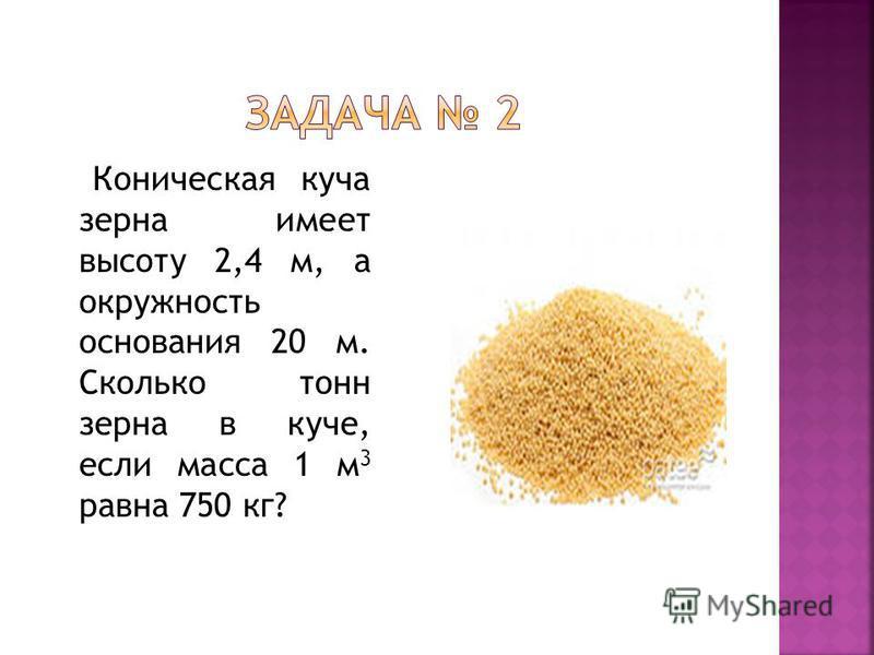 Коническая куча зерна имеет высоту 2,4 м, а окружность основания 20 м. Сколько тонн зерна в куче, если масса 1 м 3 равна 750 кг?