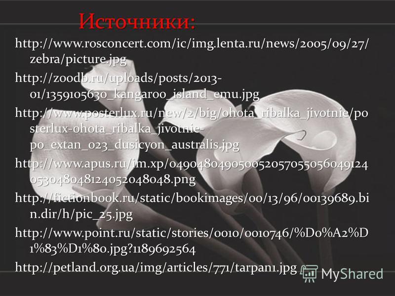 Источники: http://www.rosconcert.com/ic/img.lenta.ru/news/2005/09/27/ zebra/picture.jpg http://zoodb.ru/uploads/posts/2013- 01/1359105630_kangaroo_island_emu.jpg http://www.posterlux.ru/new/2/big/ohota_ribalka_jivotnie/po sterlux-ohota_ribalka_jivotn