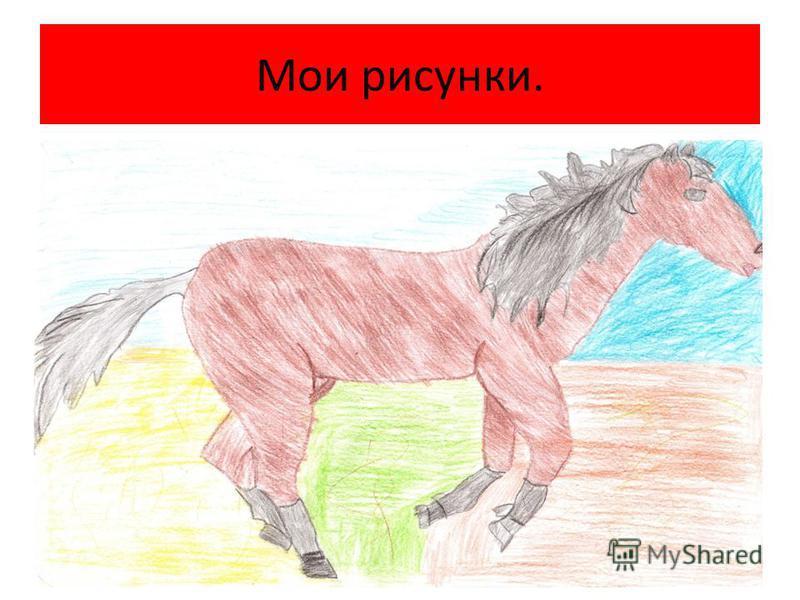 Мои рисунки.