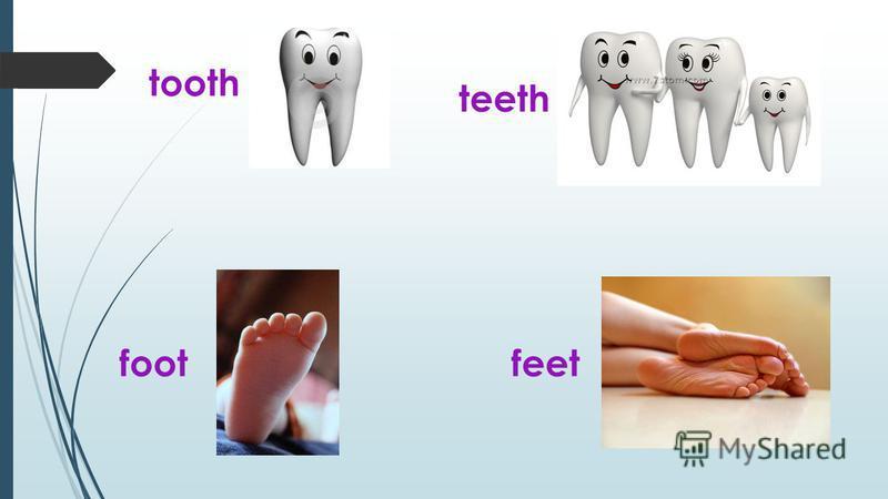 tooth teeth footfeet