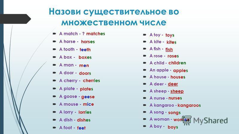Назови существительное во множественном числе A match - ? A horse - A tooth - A box - A man - A door - A cherry - A plate - A goose - A mouse - A lorry - A dish - A foot - A toy - A kite - A fish - A rose - A child - An apple - A house - A deer - A s