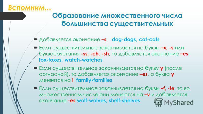Образование множественного числа большинства существительных Добавляется окончание –s dog-dogs, cat-cats Если существительное заканчивается на буквы –x, -s или буквосочетания -ss, -ch, -sh, то добавляется окончание –es fox-foxes, watch-watches Если с