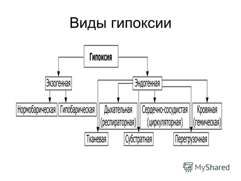 Виды гипоксии