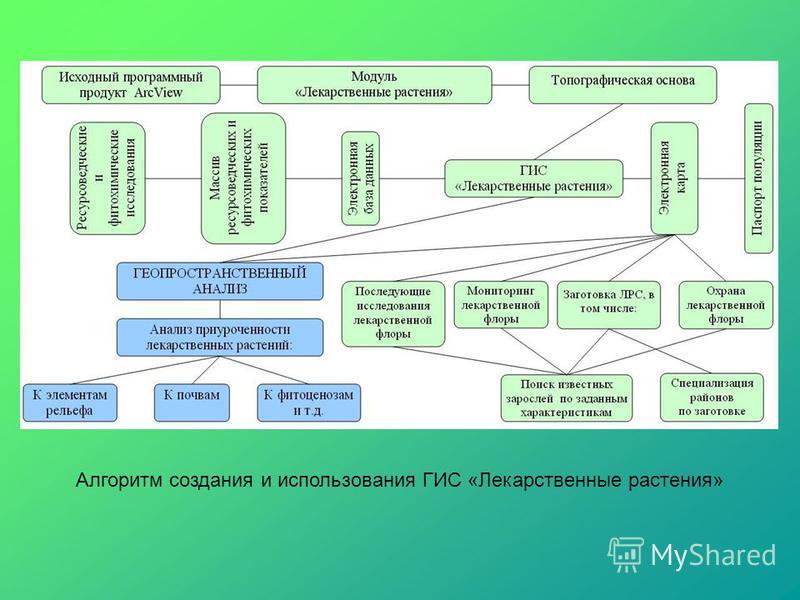 Алгоритм создания и использования ГИС «Лекарственные растения»