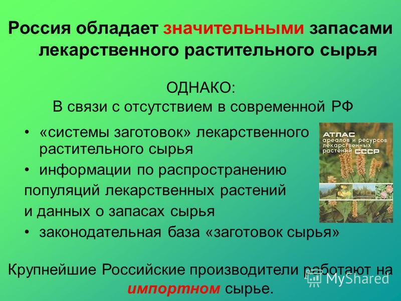 ОДНАКО: В связи с отсутствием в современной РФ «системы заготовок» лекарственного растительного сырья информации по распространению популяций лекарственных растений и данных о запасах сырья законодательная база «заготовок сырья» Крупнейшие Российские
