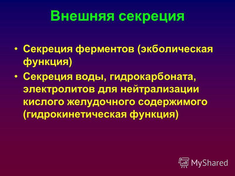 Внешняя секреция Секреция ферментов (экболическая функция) Секреция воды, гидрокарбоната, электролитов для нейтрализации кислого желудочного содержимого (гидрокинетическая функция)