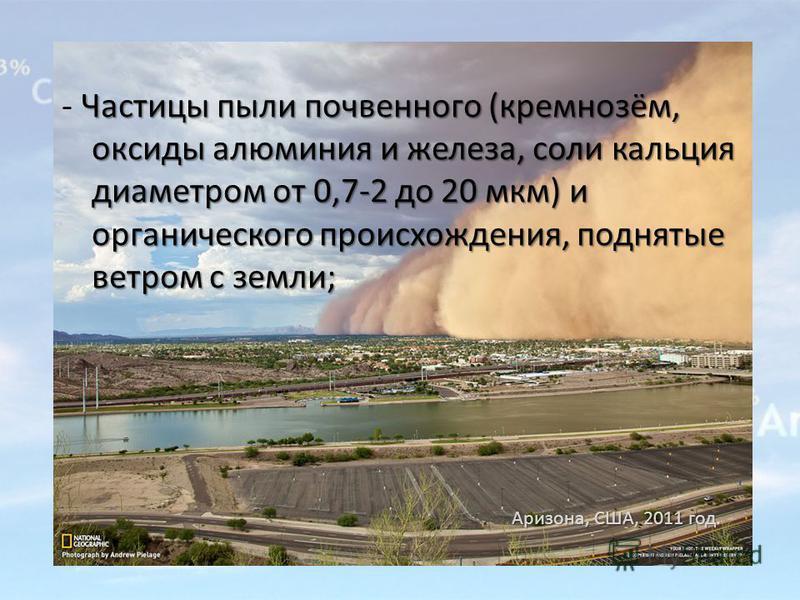 Частицы пыли почвенного (кремнозём, оксиды алюминия и железа, соли кальция диаметром от 0,7-2 до 20 мкм) и органического происхождения, поднятые ветром с земли; - Частицы пыли почвенного (кремнозём, оксиды алюминия и железа, соли кальция диаметром от