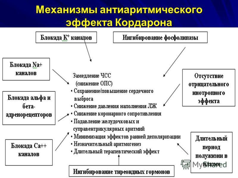 Механизмы антиаритмического эффекта Кордарона