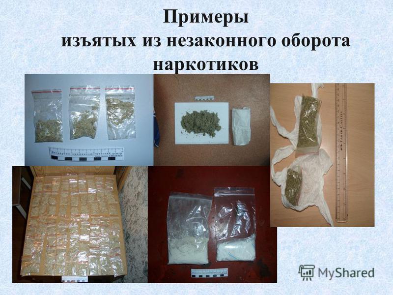 Примеры изъятых из незаконного оборота наркотиков