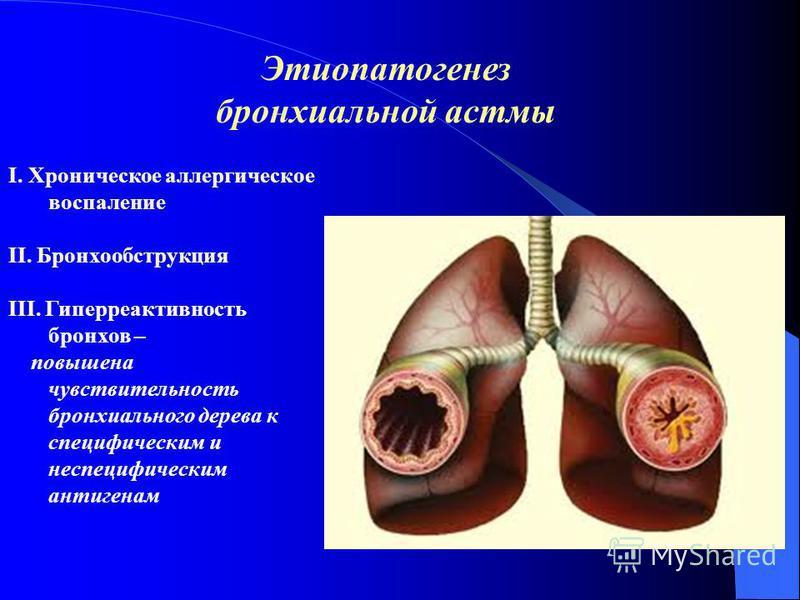 І. Хроническое аллергическое воспаление ІІ. Бронхообструкция ІІІ. Гиперреактивнооость бронхов – повышена чувствительность бронхиального дерева к специфическим и неспецифическим антигенам Этиопатогенез бронхиальной астмы