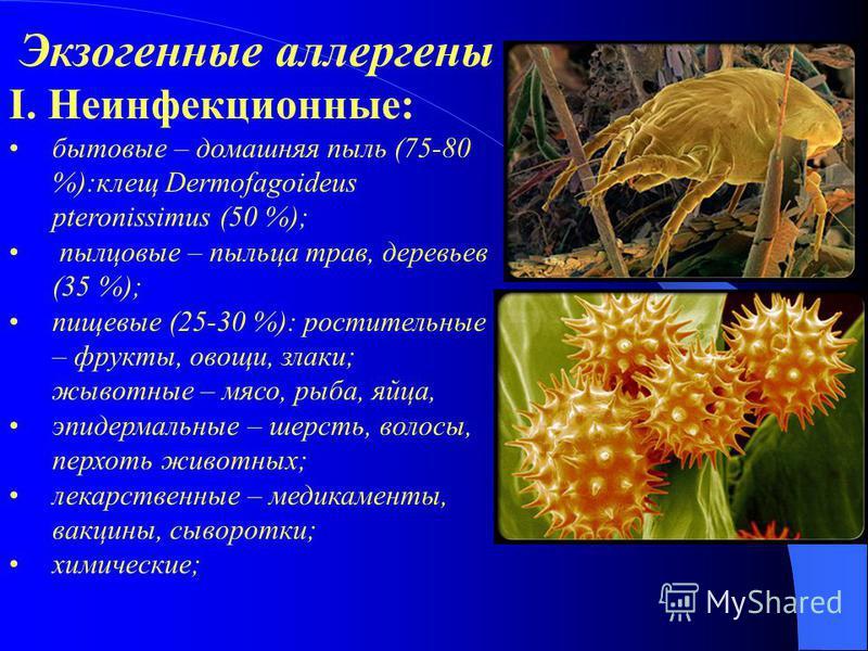 Экзогенные аллергены І. Неинфекционные: бытовые – домашняя пыль (75-80 %):клещ Dermofagoideus pteronissimus (50 %); пылцовые – пыльца трав, деревьев (35 %); пищевые (25-30 %): растительные – фрукты, овощи, злаки; животные – мясо, рыба, яйца, эпидерма