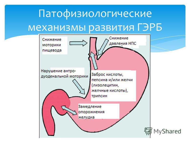 Механизмы развития резистентности к - Интерет Аптека. Купить виагру, сиалис, левитру, дапоксетин, женскую виагру, penom гель. До