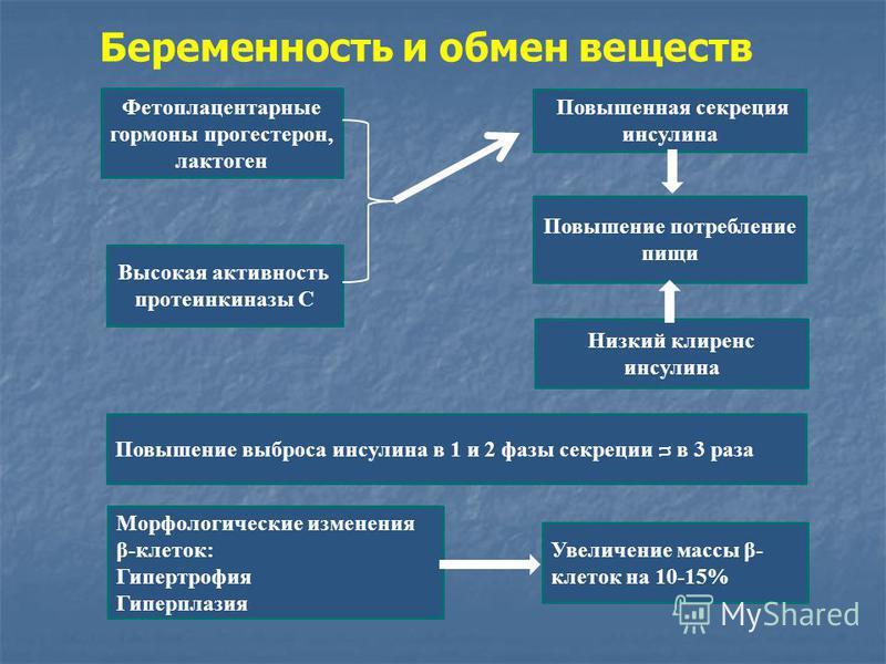 Лактоген фото