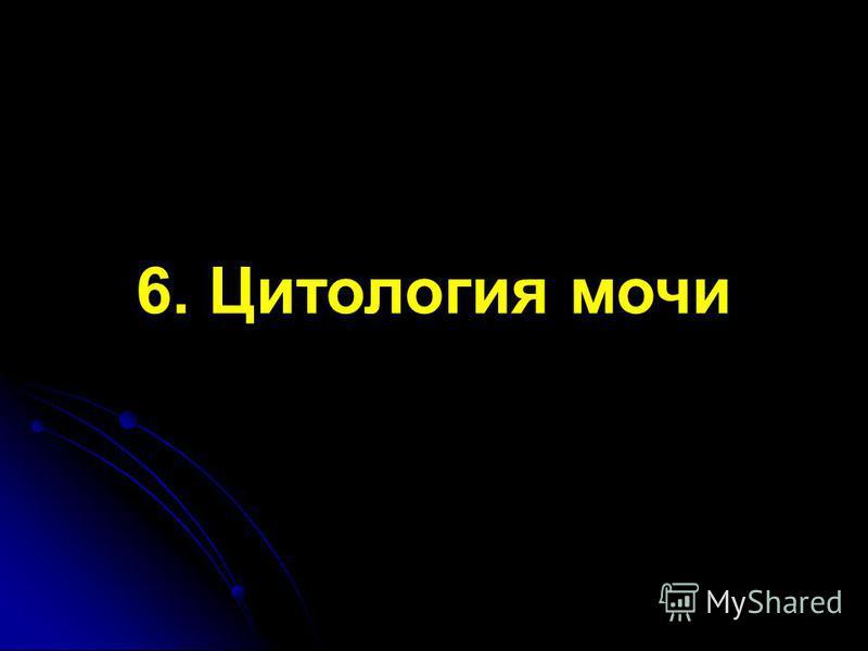 6. Цитология мочи
