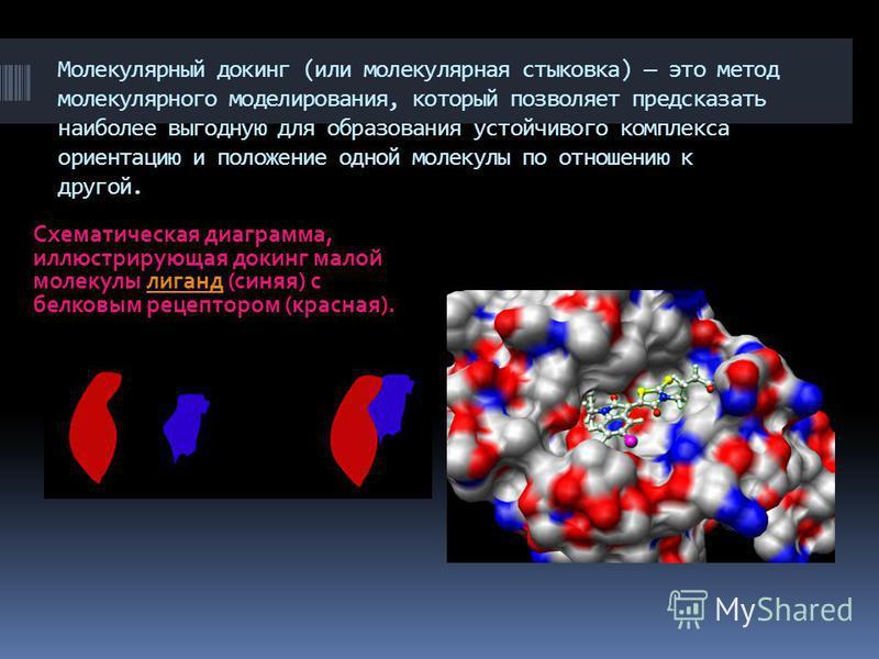 Молекулярный докинг (или молекулярная стыковка) это метод молекулярного моделирования, который позволяет предсказать наиболее выгодную для образования устойчивого комплекса ориентацию и положение одной молекулы по отношению к другой. Схематическая ди