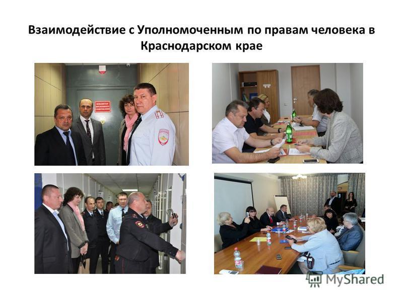 Взаимодействие с Уполномоченным по правам человека в Краснодарском крае