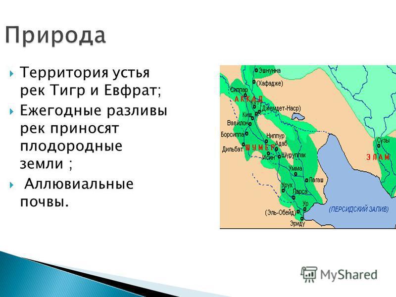 Территория устья рек Тигр и Евфрат; Ежегодные разливы рек приносят плодородные земли ; Аллювиальные почвы. Природа
