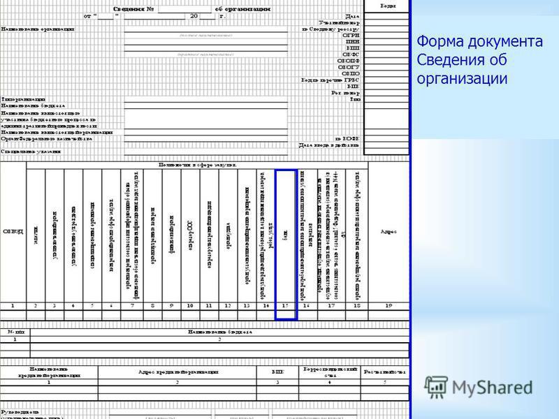 9 Форма документа Сведения об организации