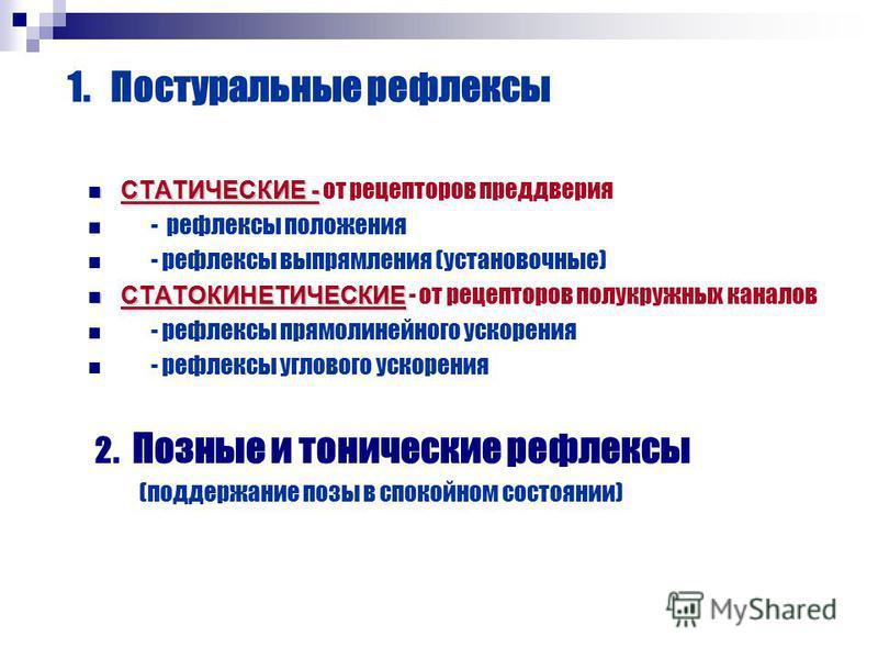 1. Постуральные рефлексы СТАТИЧЕСКИЕ - СТАТИЧЕСКИЕ - от рецепторов преддверия - рефлексы положения - рефлексы выпрямления (установочные) СТАТОКИНЕТИЧЕСКИЕ СТАТОКИНЕТИЧЕСКИЕ - от рецепторов полукружных каналов - рефлексы прямолинейного ускорения - реф