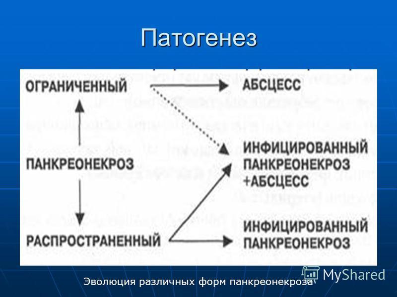 Патогенез Эволюция различных форм панкреонекроза