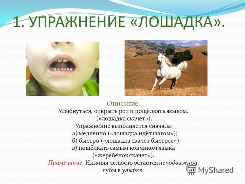 1. УПРАЖНЕНИЕ «ЛОШАДКА». Описание. Улыбнуться, открыть рот и пощёлкать языком. («лошадка скачет»). Упражнение выполняется сначала: а) медленно («лошадка идёт шагом»); б) быстро («лошадка скачет быстрее»); в) пощёлкать самым кончиком языка («жеребёнок