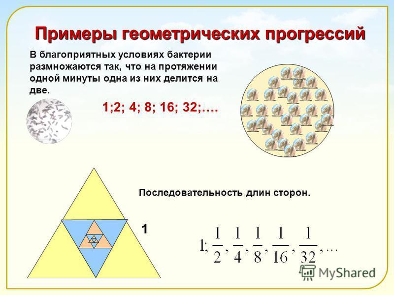 Примеры геометрических прогрессий Последовательность длин сторон. 1;2; 4; 8; 16; 32;…. 1 В благоприятных условиях бактерии размножаются так, что на протяжении одной минуты одна из них делится на две.