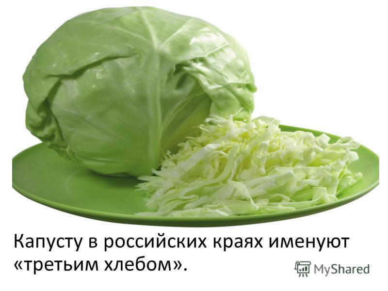 Капусту в российских краях именуют «третьим хлебом».