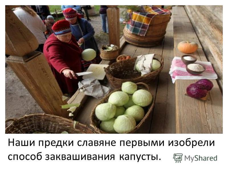 со Наши предки славяне первыми исобрели способ заквашивания капусты.