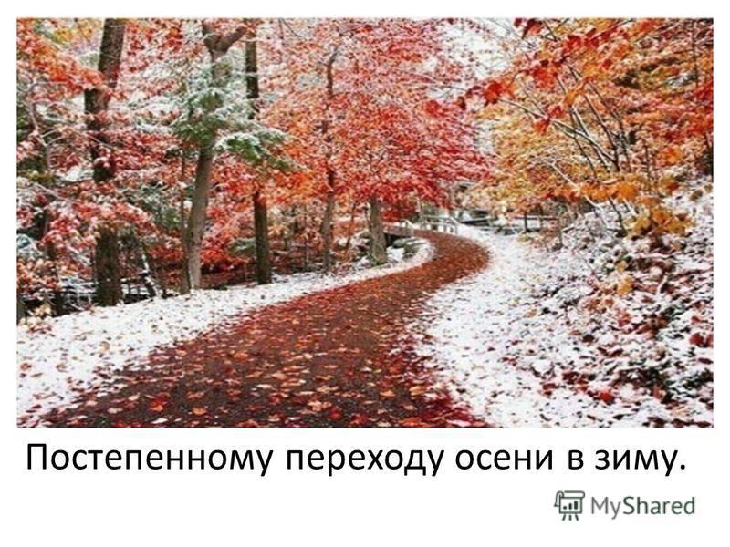 Постепенному переходу осени в зиму.