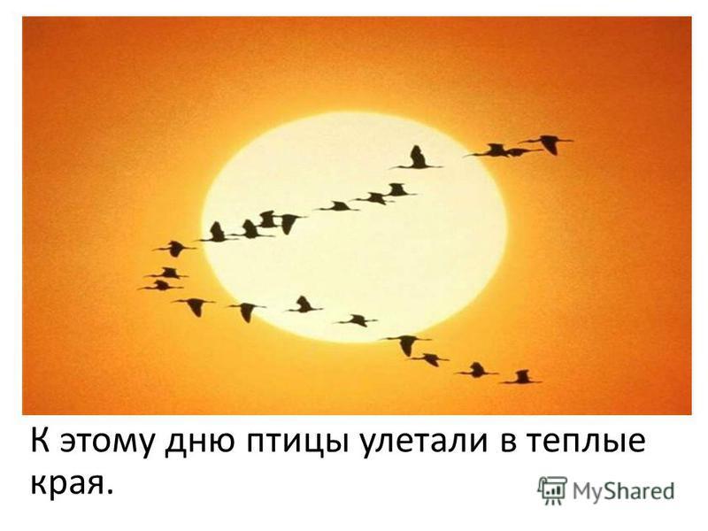 К этому дню птицы улетали в теплые края.