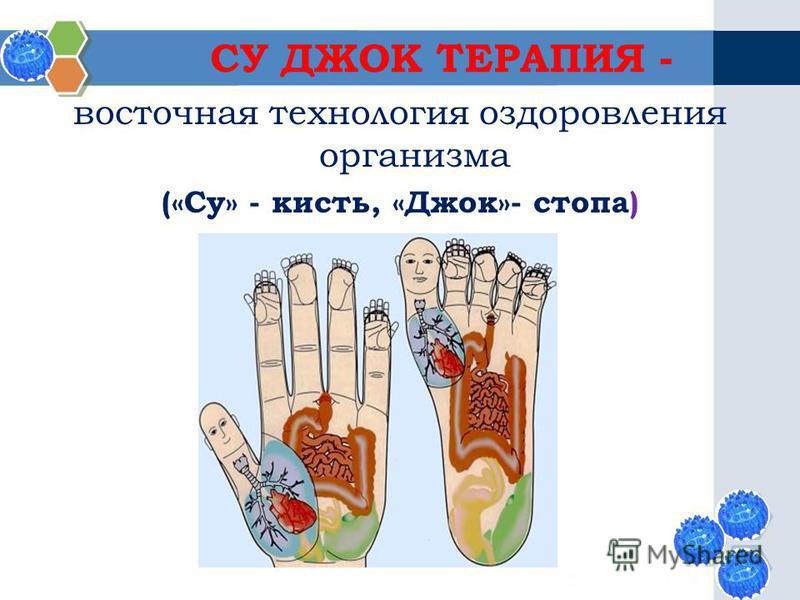 СУ ДЖОК ТЕРАПИЯ - восточная технология оздоровления организма («Су» - кисть, «Джок»- стопа)