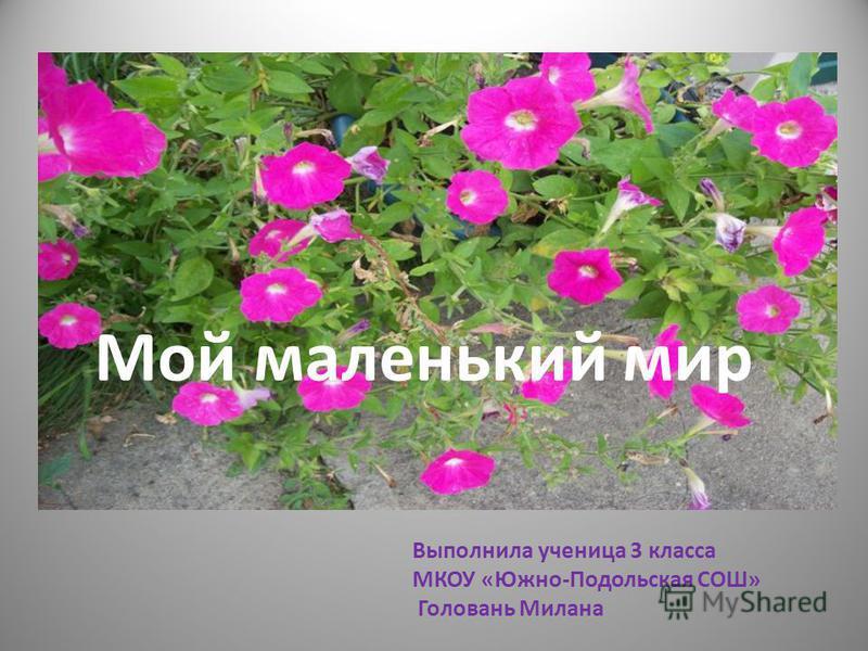 Мой маленький мир Выполнила ученица 3 класса МКОУ «Южно-Подольская СОШ» Головань Милана