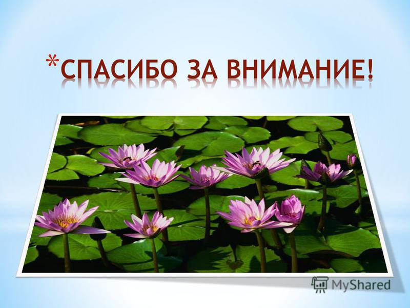 * День МАТЕРИ В последнее воскресенье ноября празднуется новый праздник День матери который стали отмечать сравнительно недавно, но он активно входит в российские дома. И это замечательно: сколько бы хороших, добрых слов мы не говорили нашим мамам, с