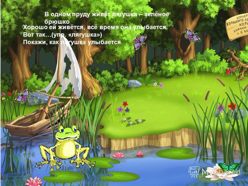 В одном пруду живёт лягушка – зелёное брюшко. Хорошо ей живётся, всё время она улыбается. Вот так…(упр. «лягушка») Покажи, как лягушка улыбается.