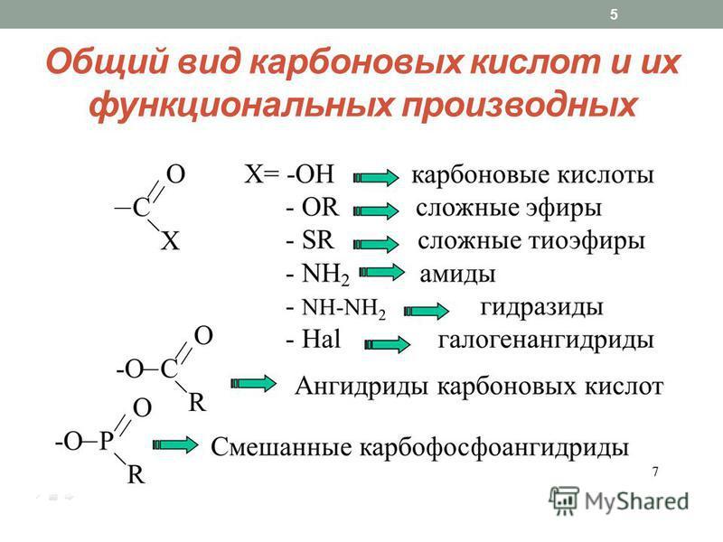 Общий вид карбоновых кислот и их функциональных производных 5
