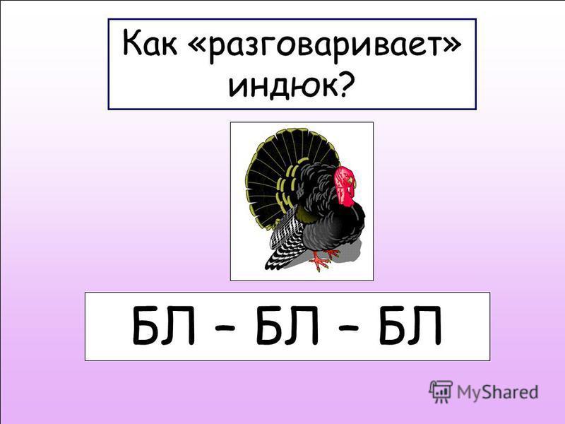 Как «разговаривает» индюк? БЛ – БЛ – БЛ