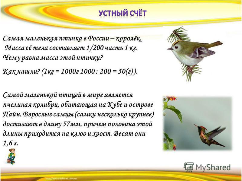 Самая маленькая птичка в России – королёк. Масса её тела составляет 1/200 часть 1 кг. Чему равна масса этой птички? Как нашли? (1 кг = 1000 г 1000 : 200 = 50(г) ). Самой маленькой птицей в мире является пчелиная колибри, обитающая на Кубе и острове П
