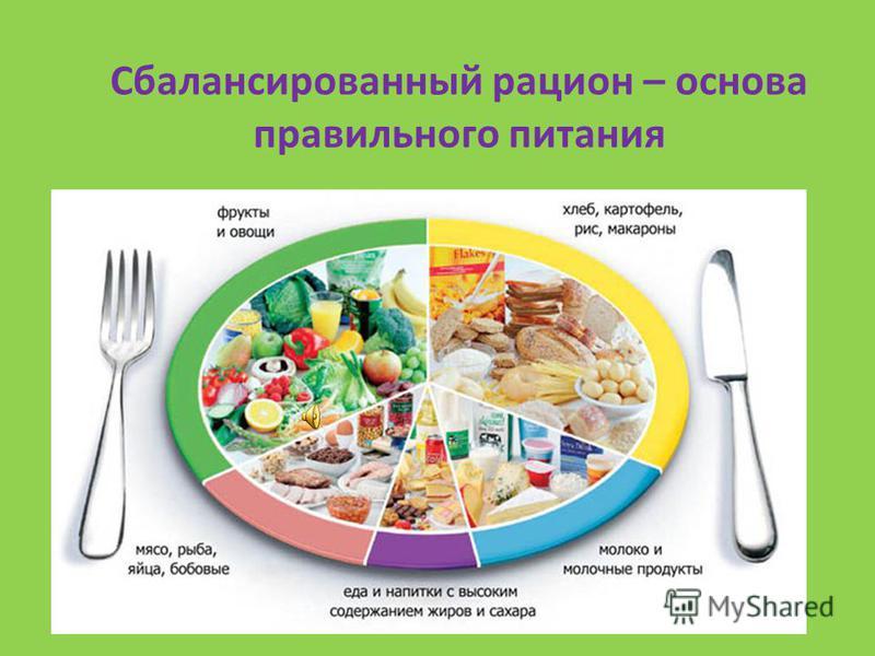 Проблема здоровья – проблема питания? Здоровое питание должно являться неотъемлемой частью повседневной жизни и способствовать крепкому физиологическому, психическому и социальному здоровью человека.