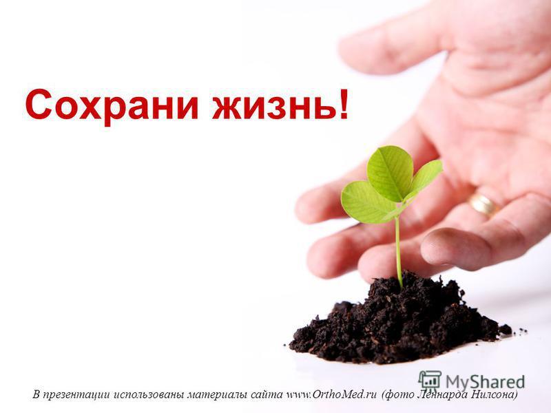 Сохрани жизнь! В презентации использованы материалы сайта www.OrthoMed.ru (фото Леннарда Нилсона)