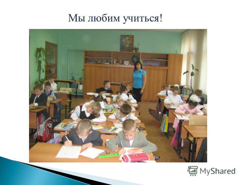 Мы любим учиться!